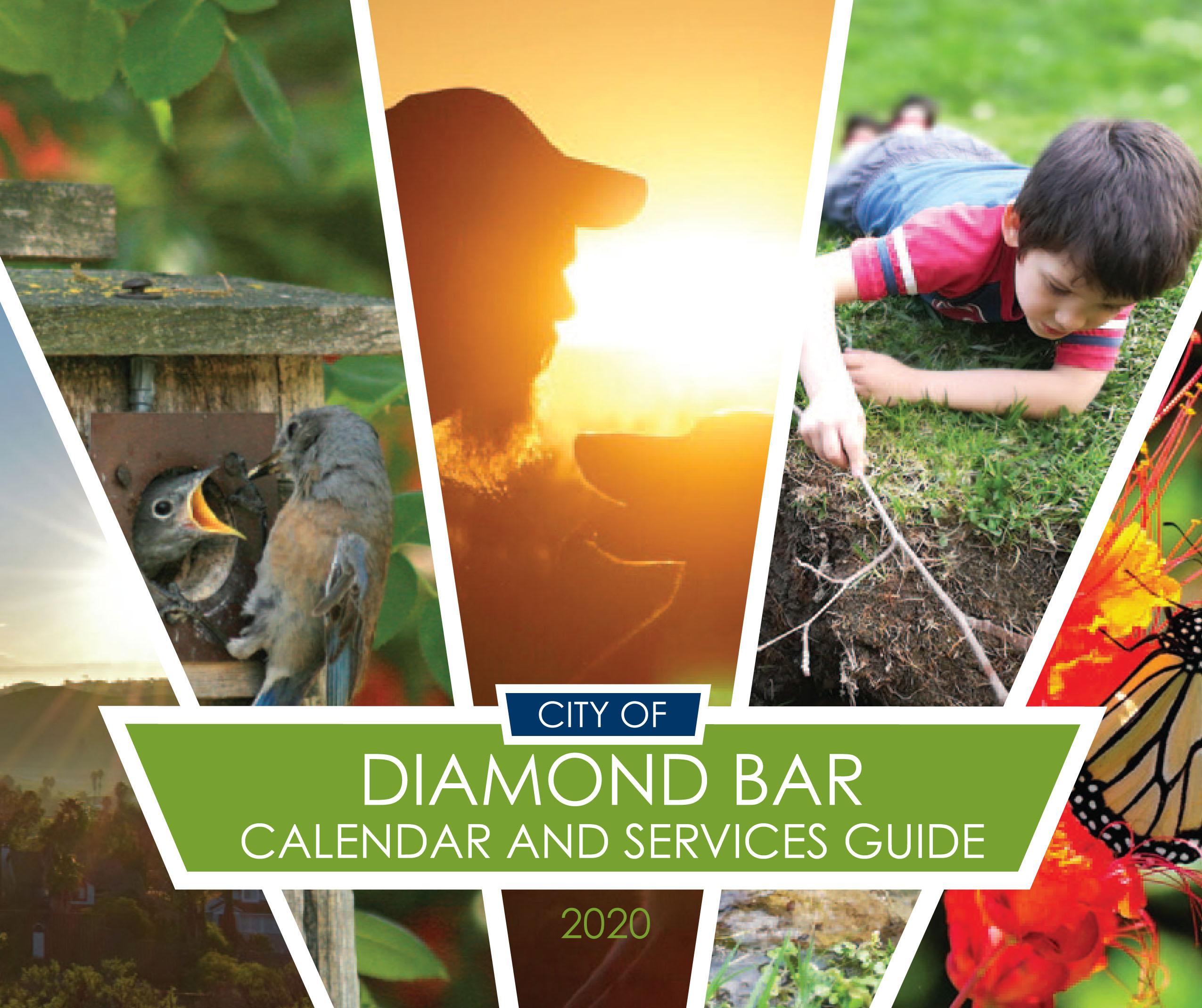 DB 2020 calendar